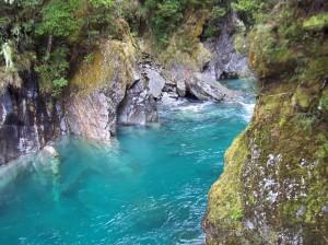 An estuary in New Zealand