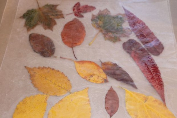 step-3-fall-wreath-from-real-leaves-HappyandBlessedHome.com