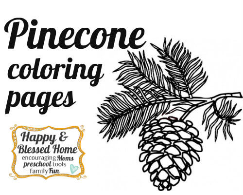 pinecone-coloring-pages-HappyandBlessedHome.com