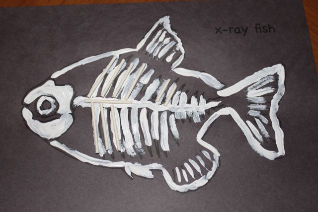 x-ray fish picture
