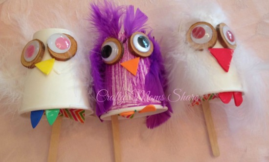 feather owls