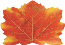 210 Leaf placemat