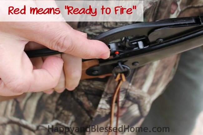How to teach a hunter in training with a Red Ryder Daisy BB Gun red means ready to fire HappyandBlessedHome.com