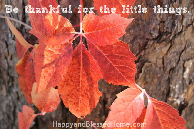 Teaching Toddlers Thankfulness - Be thankful Photo Copyright 2014 HappyandBlessedHome.com