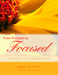 From-Frazzled-to-Focused-COVER-sm