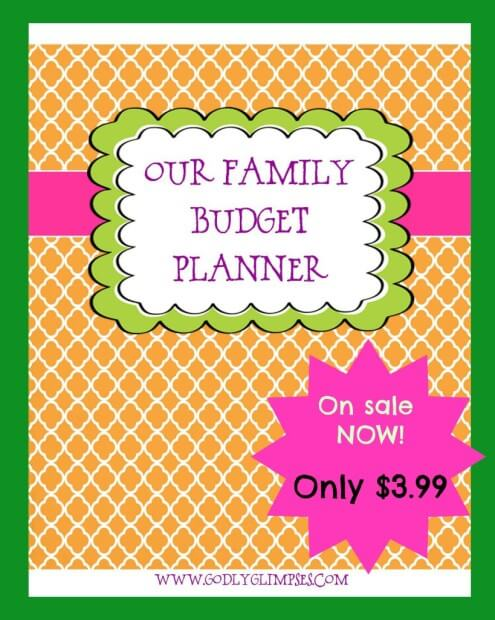 Our-Family-Budget-Planner-Promo-819x1024