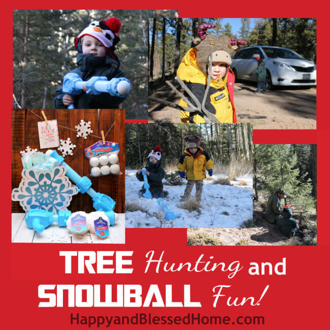 Tree Hunting and Christmas Tree Cutting and Snowball Family Fun HappyandBlessedHome.com