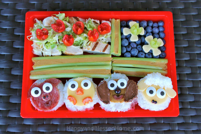 Bento Box from Above for Farm Animals in Bento Boxes and Save Money with Jingit App from HappyandBlessedHome.com.jpg