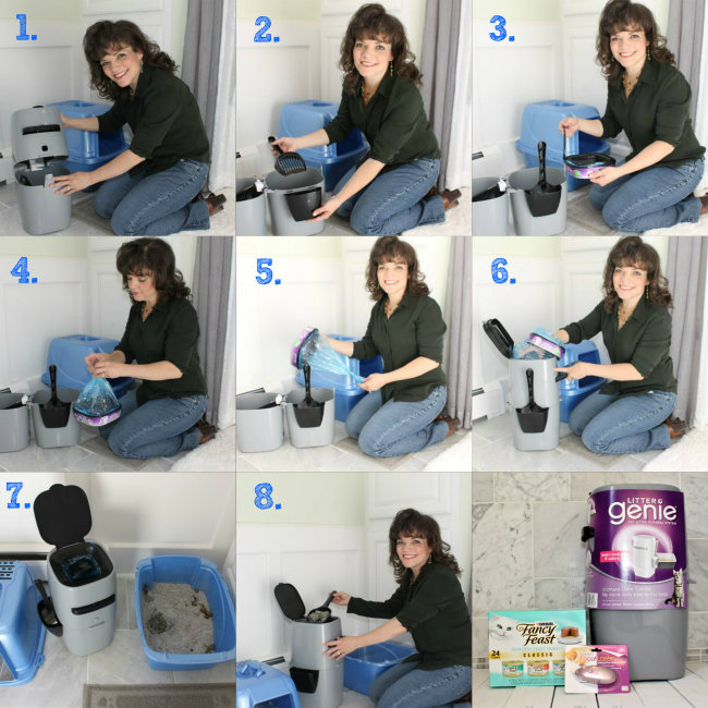 How to set up a Litter Genie to from Keep Kitty Litter Smells at Bay from HappyandBlessedHome.com