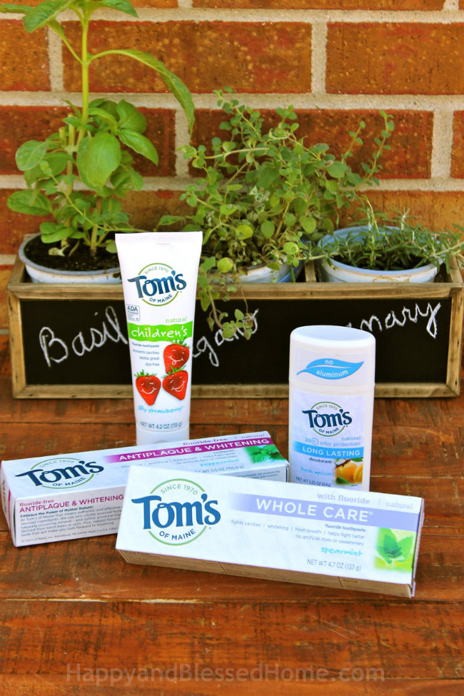 Teach Kids about Earth Day with an Herb Garden and all natural Tom's of Maine from HappyandBlessedHome.com