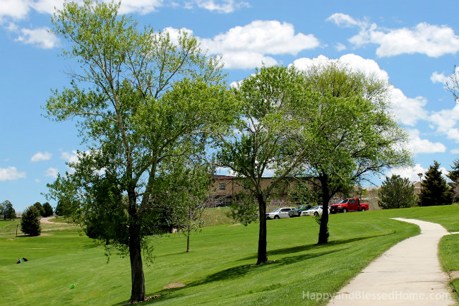 10 Tips for Teaching Kids to Enjoy the View #ETHANProject Trees at the Park photo copyright 2015 HappyandBlessedHome.com