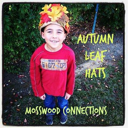 417x417xAutumn-Leaf-Hats.jpg.pagespeed.ic.4-d9Ci9e98