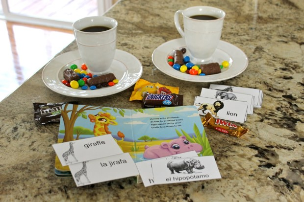 MARS Chocolate Favorites and 40 FREE Spanish English Wild Animal Flashcards for DIY Family Fun from HappyandBlessedHome