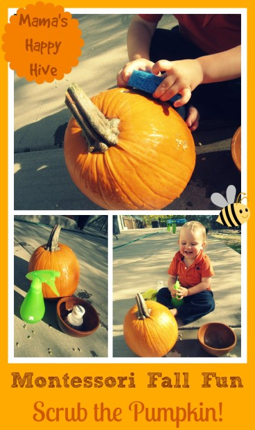 Montessori-Fall-Fun-www.mamashappyhive.com_-2