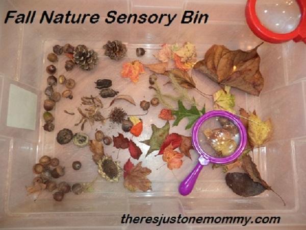 fall-nature-sensory-bin1
