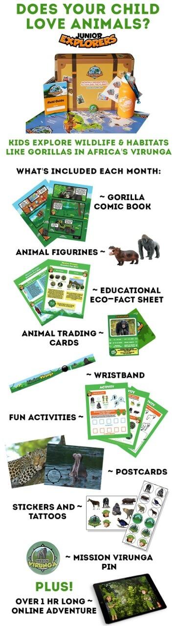 Safari Jungle Exploration