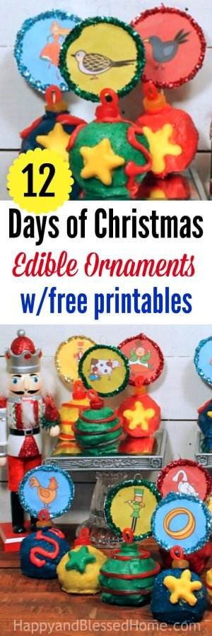 12 Days of Christmas Edible Ornaments with FREE Printables representing the song about the 12 Days of Christmas
