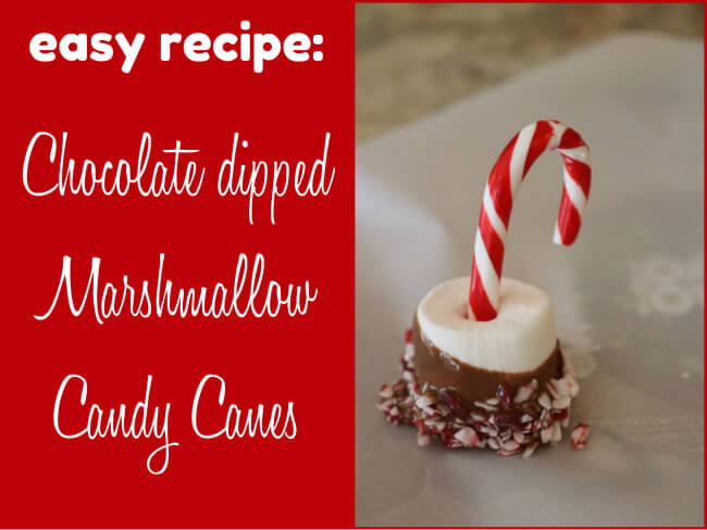 Download your easy recipe Chocolate dipped Marshmallow Candy Canes