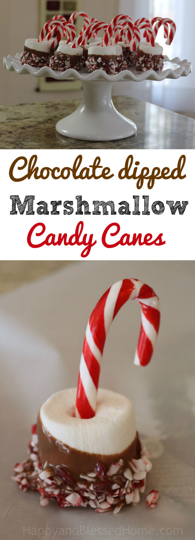 Easy recipe for Chocolate dipped Marshmallow Candy Canes