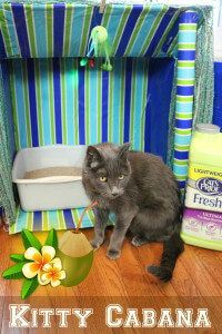 DIY Kitty Cabana - an oasis for cats