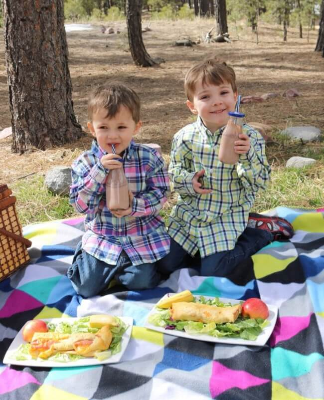 Picnic Tips and a FREE Printable Picnic Game - laid back family fun!