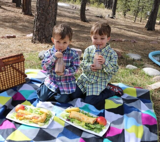 Picnic Tips and a FREE Printable Picnic Game - plus easy recipe for ham & cheese roll ups!