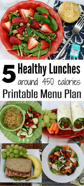 Printable Menu Plan for 5 Healthy Lunches Around 450 Calories Each