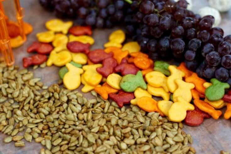 8 Solutions for Snack Attacks including sunflower seeds and Goldfish crackers