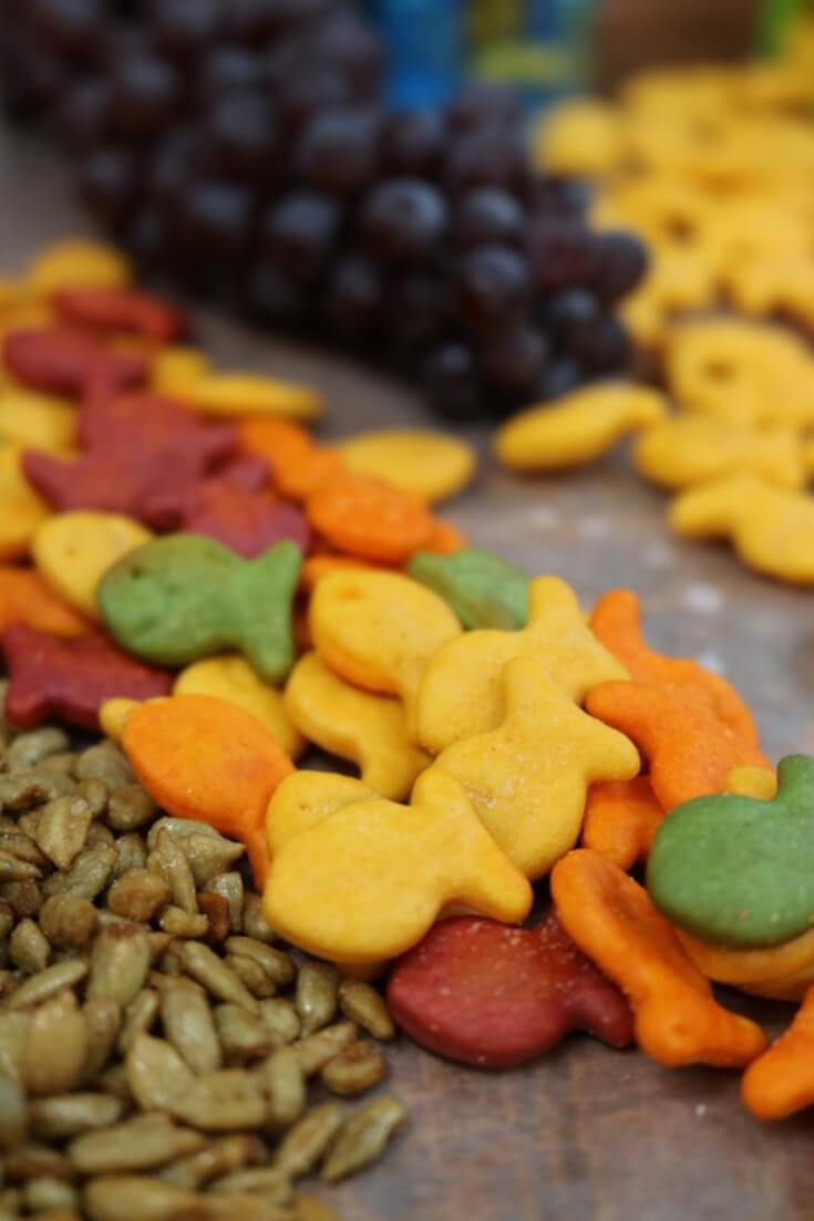 8 Solutions for Snack Attacks like tasty Goldfish crackers in Cheddar
