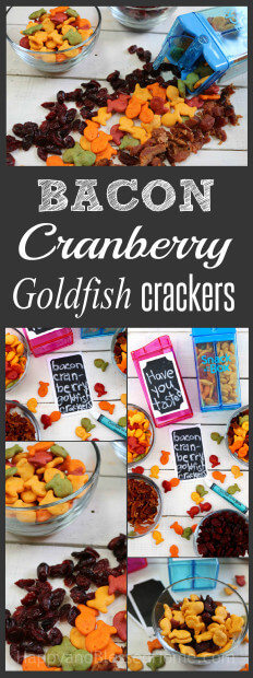 the-best-of-sweet-and-salty-protein-packed-snack-bacon-cranberry-and-goldfish-crackers-snack-mix-recipe