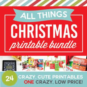 750 NEW All Things Christmas Bundle