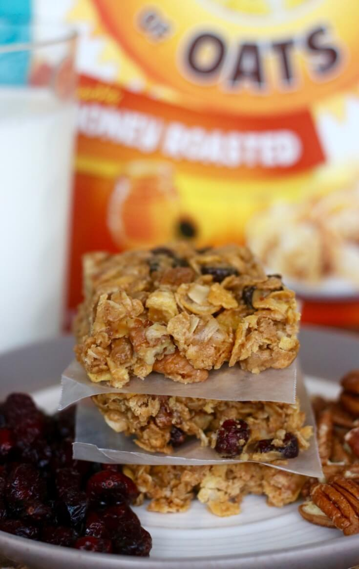 tasty healthy fruit and nut no bake granola bars