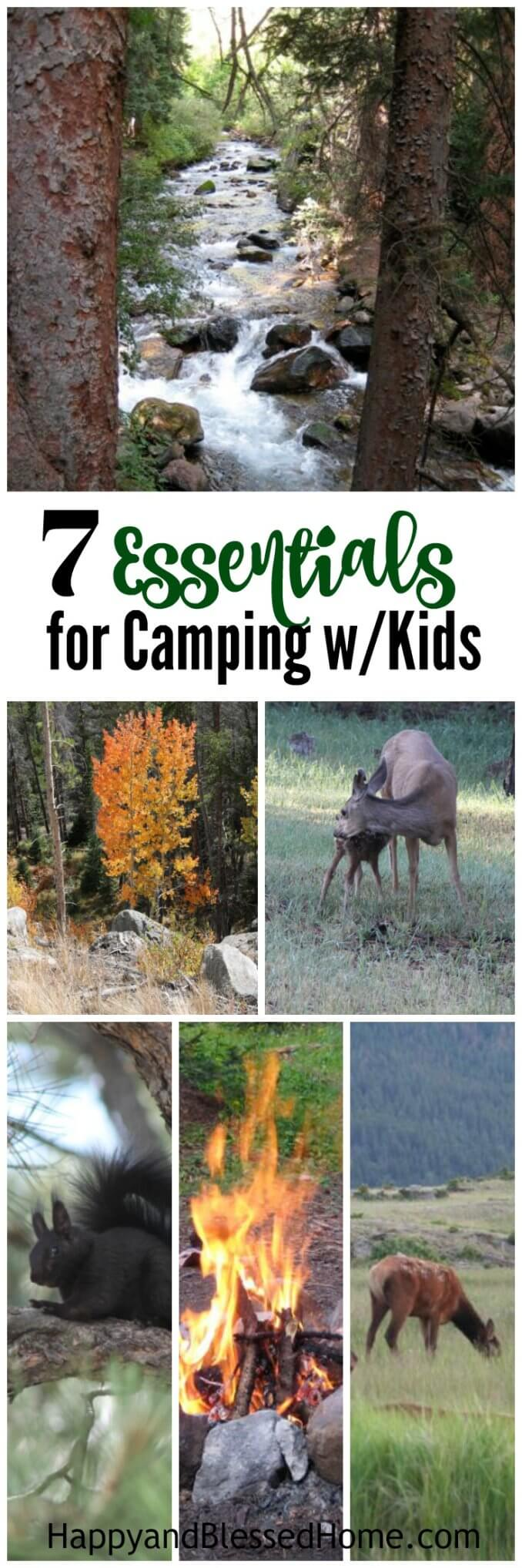 7 Essentials for Camping with Kids