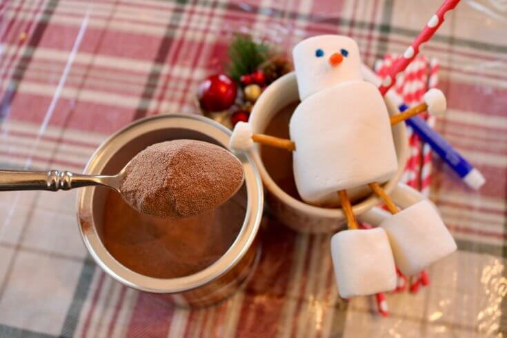 Stephen's Cocoa Powder and 5 Build a Snowman Activities Printable Pack and Two Brothers who Loce Hot Cocoa- Photo Copyright 2017 HappyandBlessedHome.com