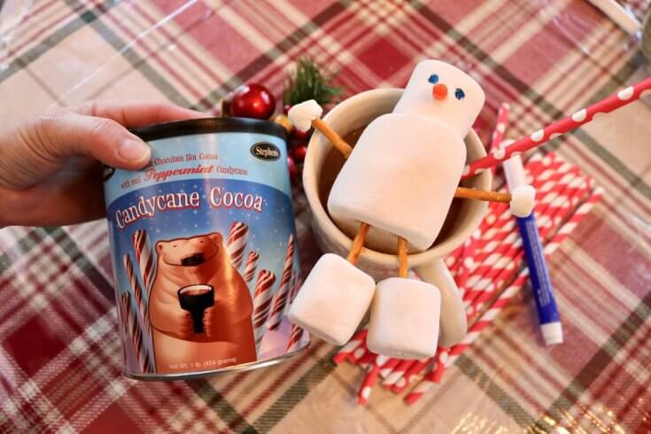 Stephen's Hot Cocoa and 5 Build a Snowman Activities Printable Pack and Two Brothers who Loce Hot Cocoa- Photo Copyright 2017 HappyandBlessedHome.com