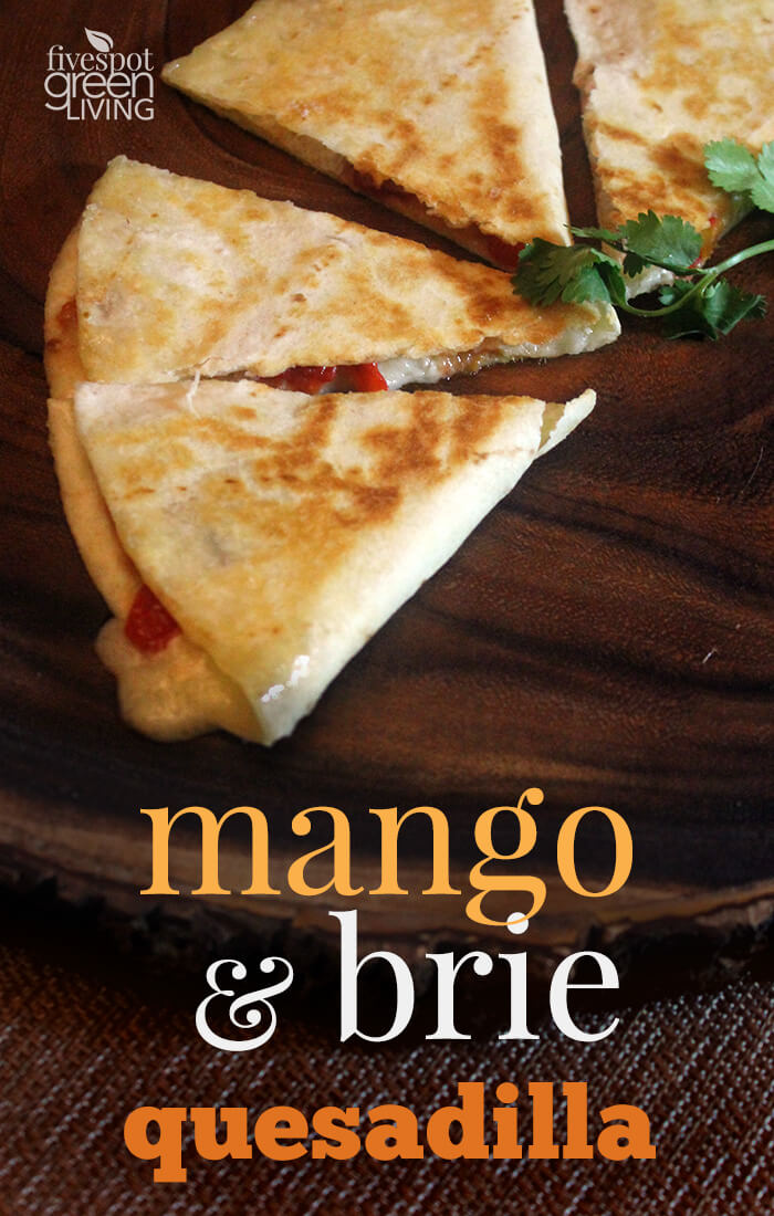 blog-mango-brie-quesadilla