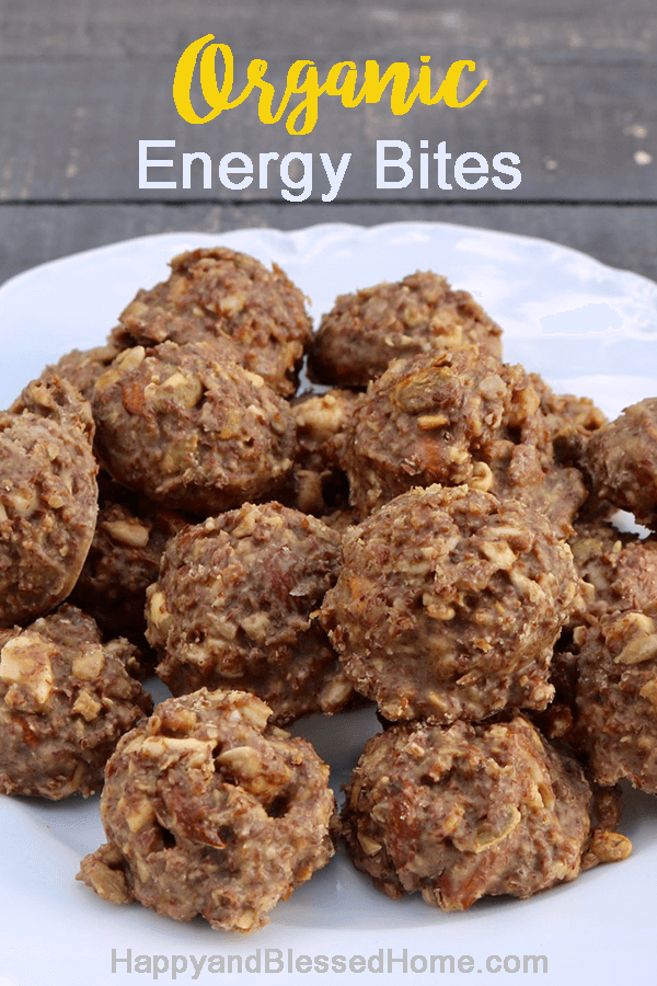 No Bake Low Carb Keto Organic Energy Bites with Mixed Nuts
